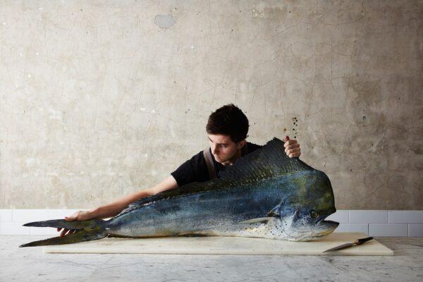 Winner Winner Fish Dinner – Rob Palmer Wins National Photographic Portrait Prize